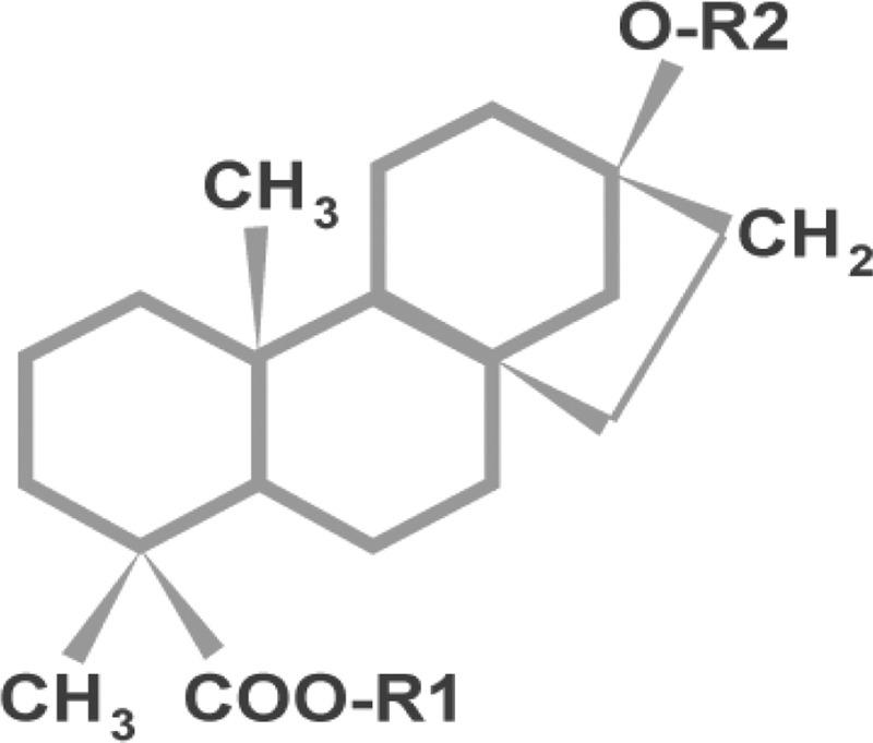 ترکیبات قندی گیاه استویا-محصولات رژیمی و دیابتی دکتر استویا