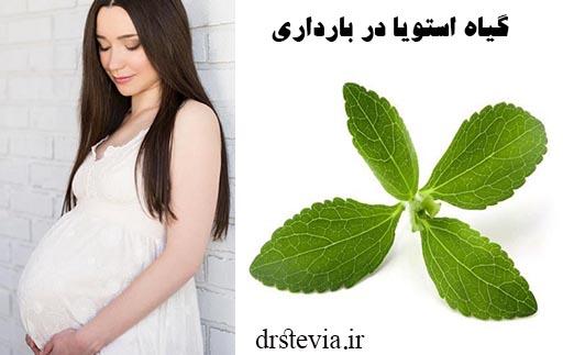 گیاه استویا در بارداری