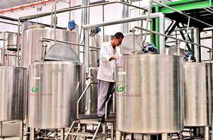 کارخانه تولید شیرین کننده استویا